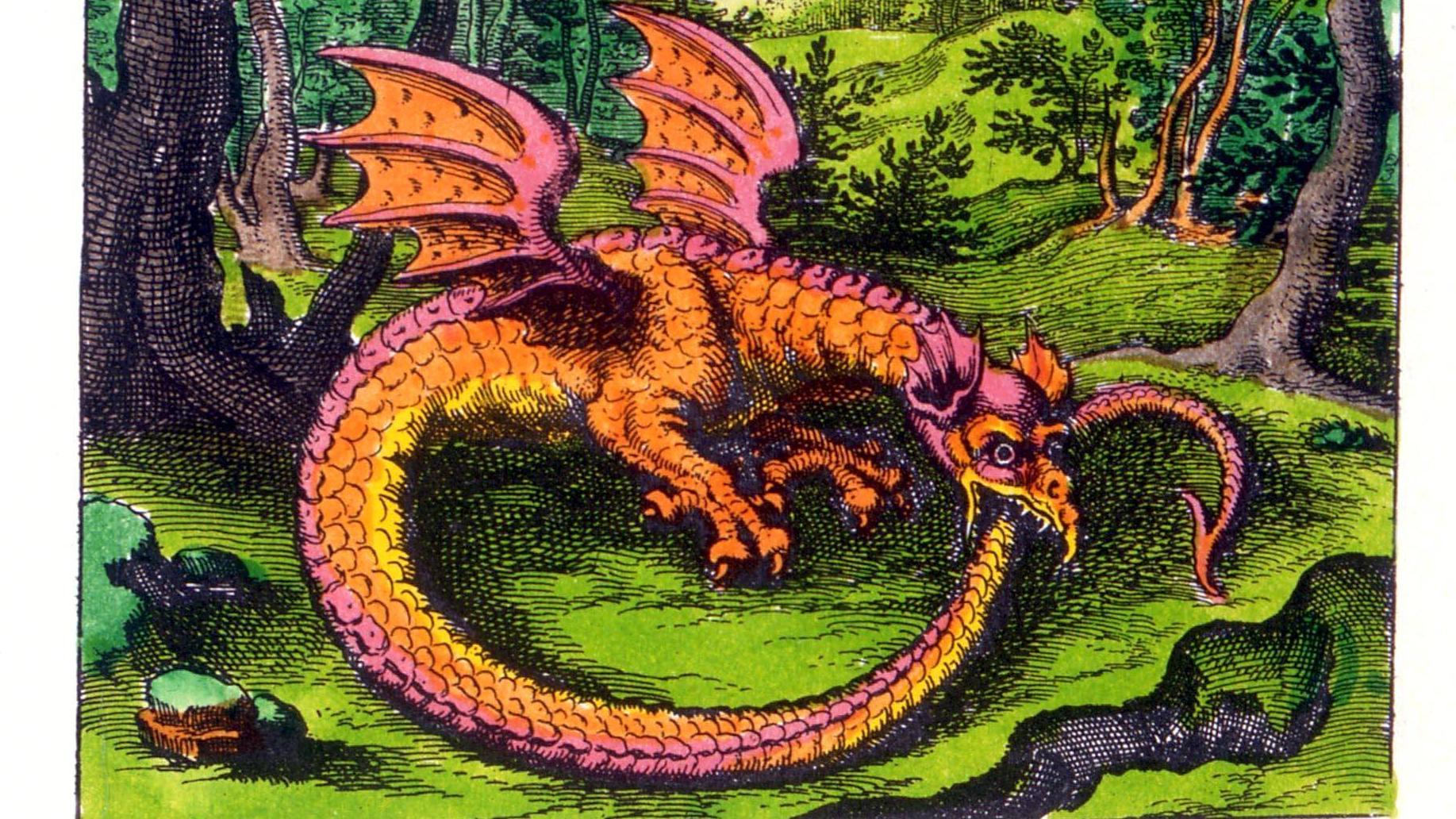 Bedeutung drachen tattoo Drachen Tattoos